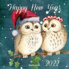 New Year Card – Printable, Free – Owls